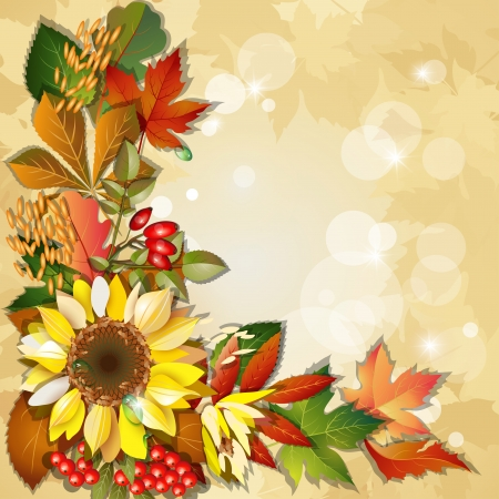 Autumn background with sunflower, rosehip, berry, barley, colorful leaves and place for text