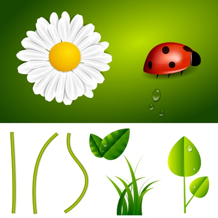 Fresh Spring and Summer Nature Elements Stock Vector - 18339900