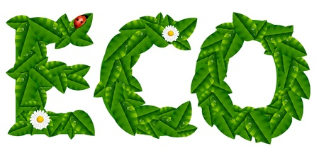 Natural Ecology Concept with Leaves Stock Vector - 18633134
