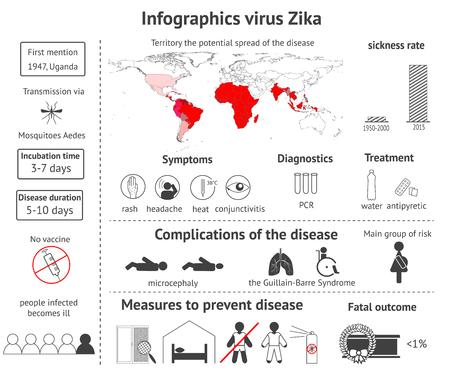 aedes: Infographics virus Zika - information about symptoms, treatment, consequences and prevention of illness