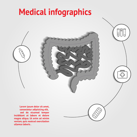 ileum: Intestines infographics medical template with space for text