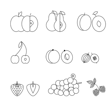 prune: Fruit icons, thin line style, flat design. Set of traditional summer earopian fruits