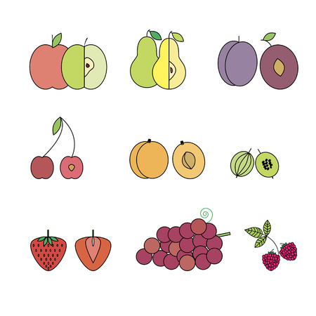 red grape: Flat Design Isolated Fruit Vector Icon Set. Colorful fruits in two versions - full and cut in half