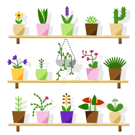 Indoor potted plants isolated on white. Vector set green plant in pot, illustration of flowerpot bloom