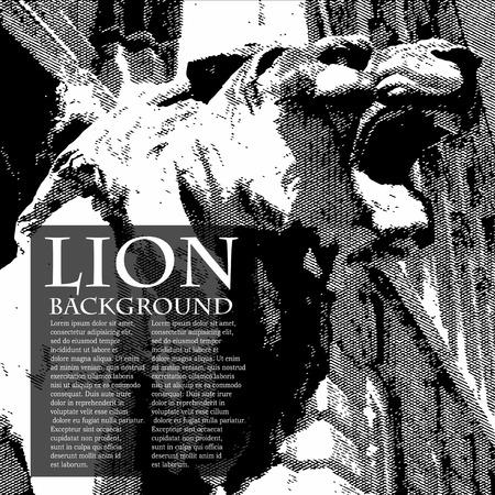 disappeared: lion vintage illustration. Ancient engraving Illustration