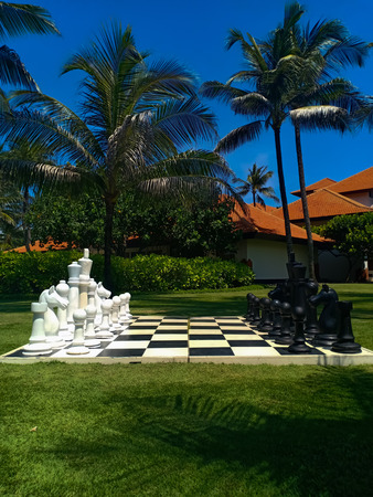 A large chessboard and chess in a garden