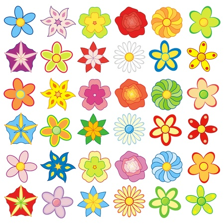 Pack of colorful flowers