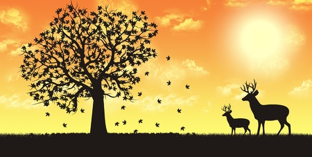 Four seasons render illustration - fall autumn illustration