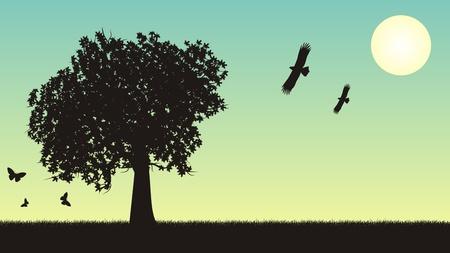 Four seasons vector illustration - summer Stock Vector - 10034709