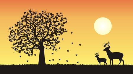 Four seasons vector illustration - fall, autumn Stock Illustratie