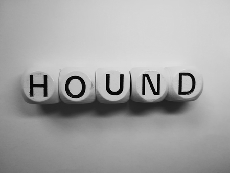 spelling of word hound using dice on white background
