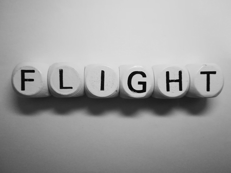 spelling of word flight using dice on white background