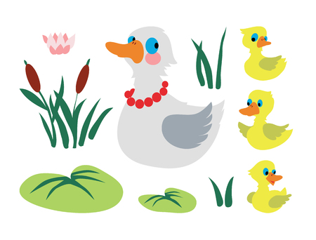 Set of mother duck with three baby ducks isolated on white background. Vector illustration.