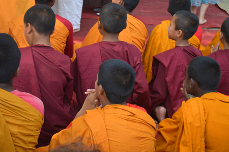 Young Buddhist Monks on ceremony, back of the head view.