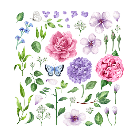 Big set of Flowers roses, hydrangea, apple tree flowers , leaves, petals and butterflies isolated on white background. Art vector illustration in watercolor style. Ilustração