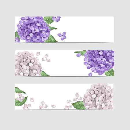Floral banner template in watercolor style. Hydrangea Flowers in watercolor style isolated on white background for web banners, polygraphy, border. Art vector illustration.