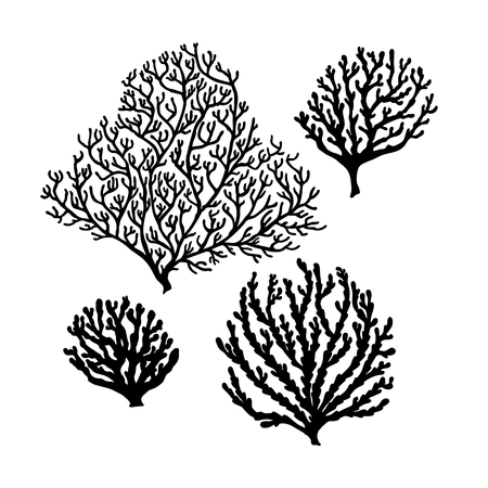 Set of Sea reef corals black silhouette isolated on white background. Art vector illustration