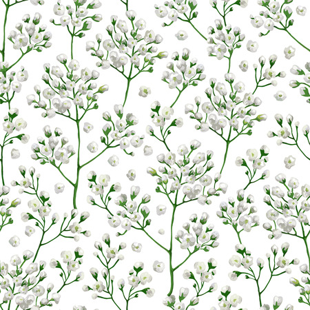 Seamless pattern with gypsophila flowers in watercolor style isolated on white background. Art vector illustration