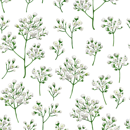 Seamless pattern with gypsophila flowers in watercolor style isolated on white background. Art vector illustration 写真素材 - 123990974