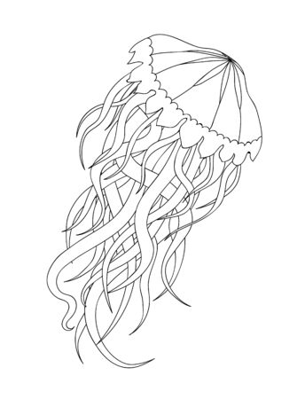 Jellyfish in  inspired style on white background. Coloring book for adult and older children.