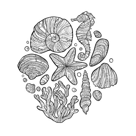Doodle Seashell set inspired style. Coloring book for adult and older children.  イラスト・ベクター素材