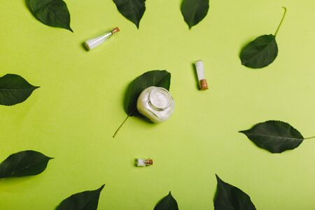 Eco cosmetics. A jar of white cream and the leaves of the tree on a green background. Skin care.