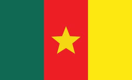 Cameroon flag . National flag of Cameroon vector