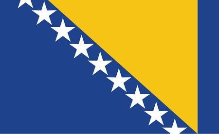Bosnia and Herzegovina flag. Simple vector. National flag of Bosnia and Herzegovina