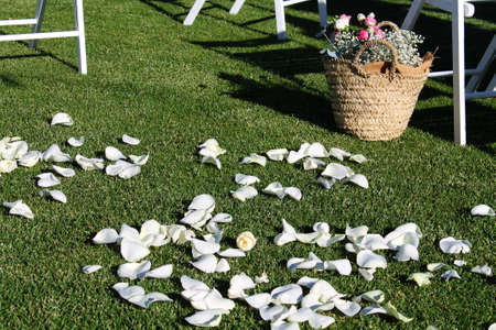 flower petals scattered on the grass behind the bride and groom Stock Photo