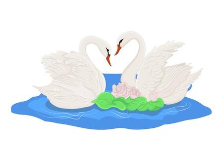 물에 두 개의 흰색 백조 일러스트