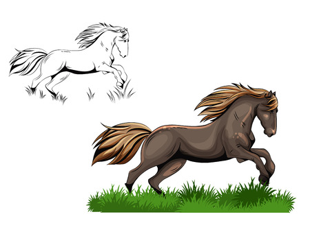 cartoons outline: vector color and black and white drawing of a horse