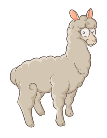 color funny character fluffy alpaca