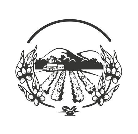 planta de cafe: ilustración de una plantación de café sobre un fondo blanco