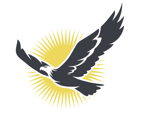 bird flying: illustration of an eagle in the sun