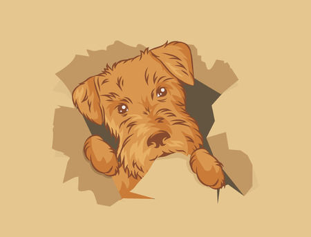 illustration puppy in the box