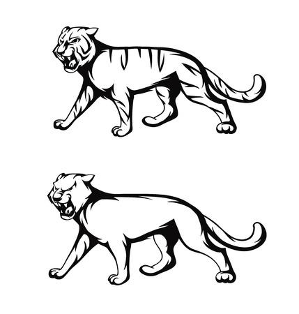 illustration tiger and panther Vector Illustration