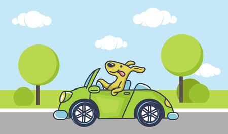 Cute dog driving green car, vector illustration
