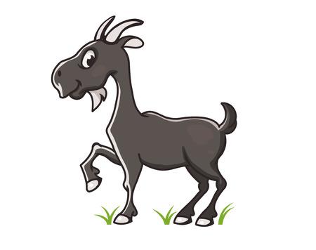 grey: Grey goat vector  illustration