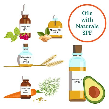 Oils with Naturals Spf. Essential Oil. Sunscreen. Sun protect. Organic Cosmetics. Raspberry, Almond, Wheat Germ, Carrot Seed, Avocado. Bottle with oils, with liquid. Vector illustration. White isolate Çizim
