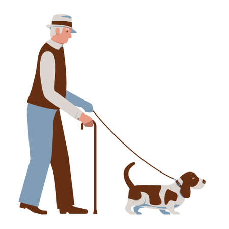 Old Man Walking a dog. Senior with Basset Hound on Leash. Elderly in Hat with Cane. Pensioners Activity. Vector illustration in blue and brown colors isolated on a white Illustration