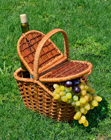 picnic basket with h ripe grape, bottle of wine on the green grass photo