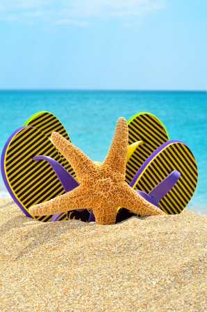 Flip flops and starfish on the sand near the ocean photo