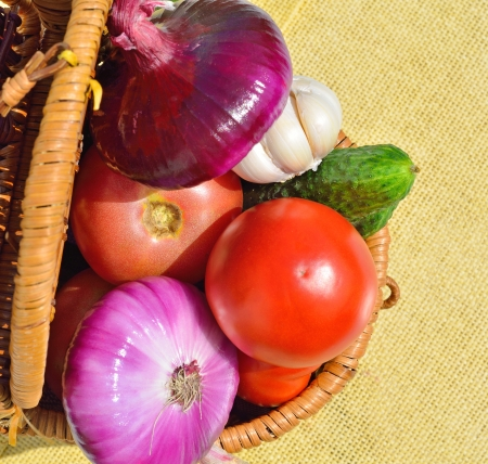 Raw vegetables in the basket photo