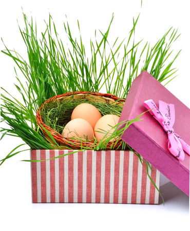 Green nest with eggs in the gift box isolated on white photo