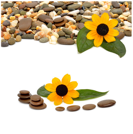 Many-colored little pebbles and beautiful flower isolated on the white background. Collage photo