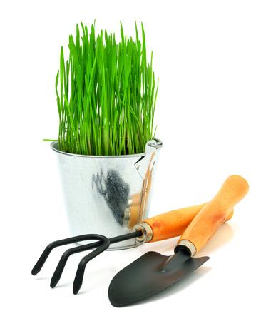 graft: Shovel, aluminium bucket with grass, rake, garden tools isolated on white Stock Photo