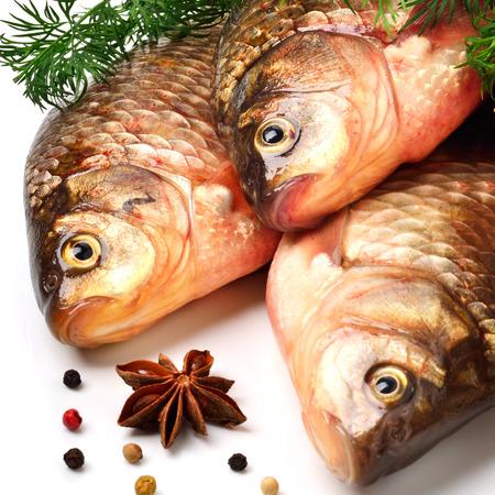 karausche: Karausche Fische mit gr�ner Dill isoliert auf wei�em Hintergrund Lizenzfreie Bilder