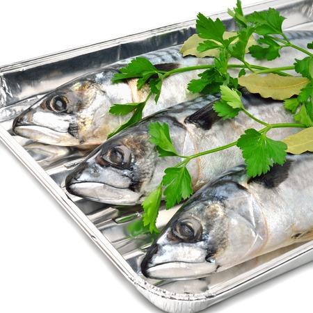 Fresh mackerel fish with parsley on the aluminium foil tray isolated on white photo
