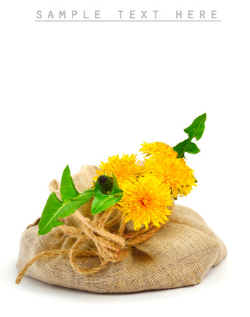 sacking: Beautiful wildflowers, dandelions, milfoil in the sacking isolated on white Stock Photo