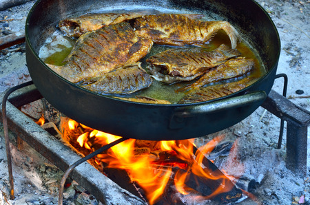fish fire: Grilled fish on open fire in a frying pan